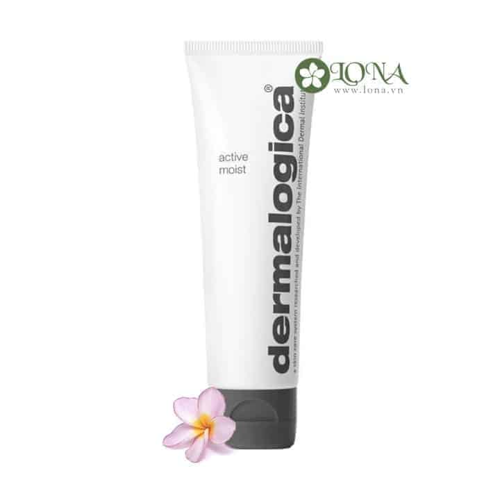 dermalogica normal oily skin kit